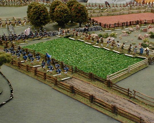 The Militia prepare for the British advance.